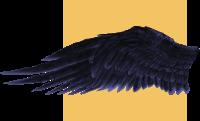 wingtestleft.png